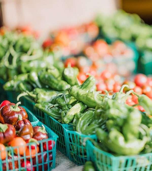 Article – La double transition de l'agriculture urbaine :  regard croisé entre propriétaires et agriculteurs