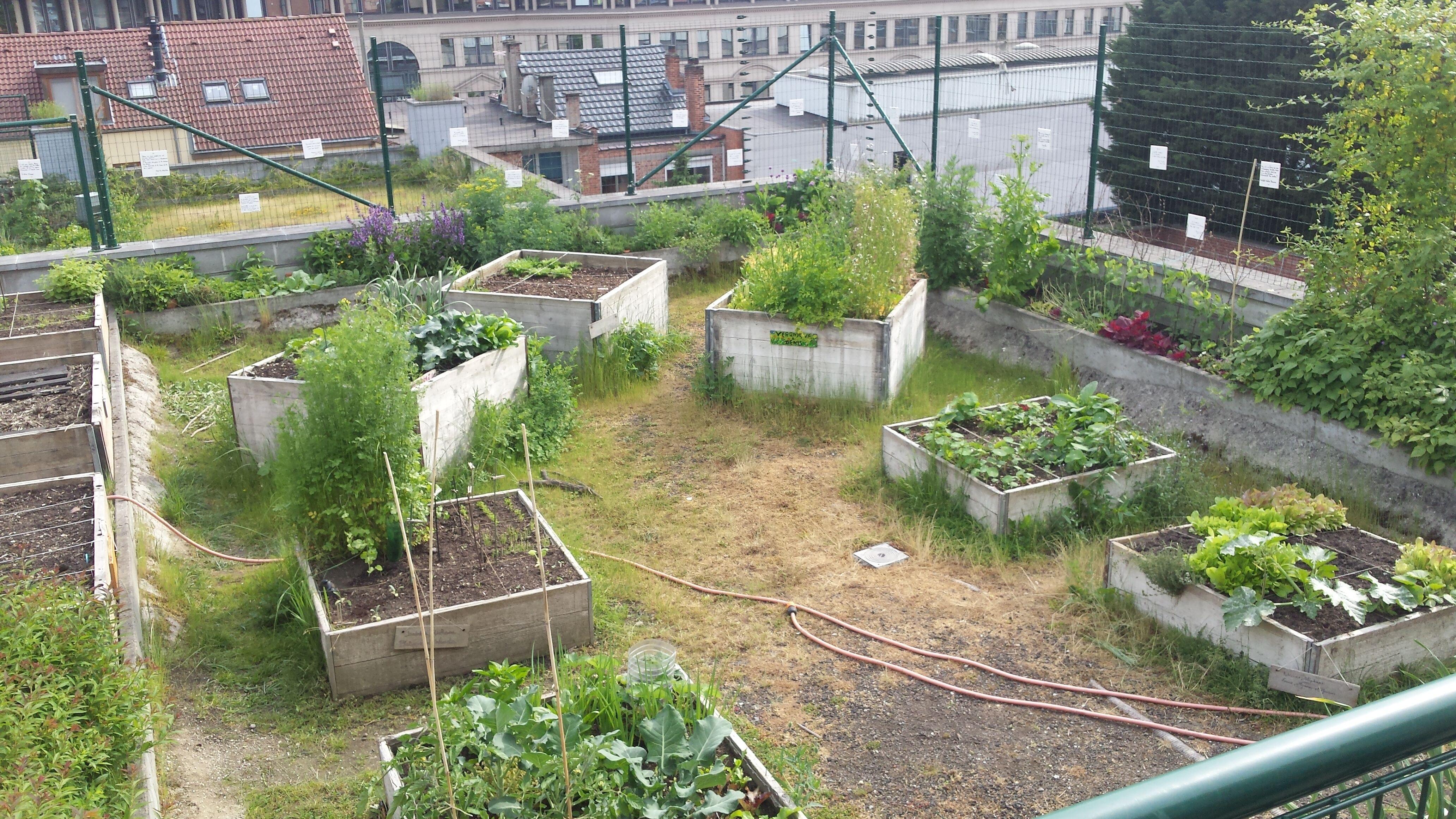 Een nieuw stadslandbouwdossier in de Gids Duurzame Gebouwen