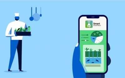 Smart Aquaponics: ondersteuning van stadslandbouw door aquaponie