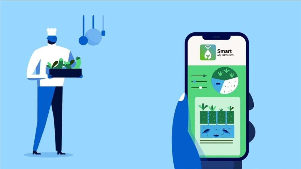 Smart Aquaponics : Soutenir l'agriculture urbaine par l'aquaponie