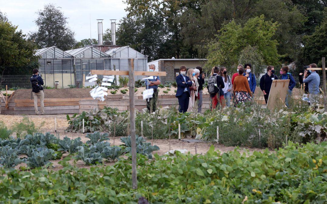 Een onderzoeksplatform voor stadslandbouw – WASABI
