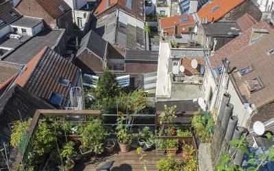 Een opleiding in Stadslandbouw en duurzame gebouwen